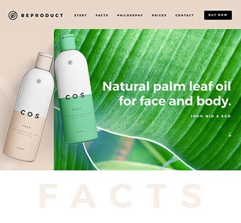 Website Product